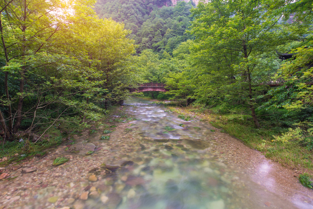 Best Of Zhangjiajie National Forest Park Page 5