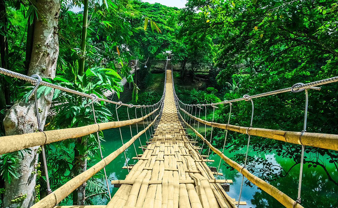 Bamboo pedestrian hanging bridge over river in tropical forest, Bohol, Philippines