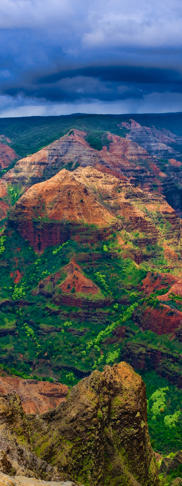 Waimea Canyon State Park, island Kauai, Hawaii, nicknamed the Grand Canyon of the Pacific